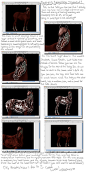 Horse Detailing Tutorial by Peachesrox by peachesrox