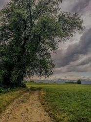 Cloudy time to walk again by Arts-of-Cendrayliss