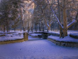 Winter silence by Olga17