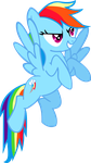 Rainbow Dash flying by tollywoga