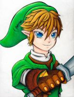 Link by tropicalblue23