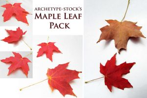 Maple Leaf Pack by archetype-stock