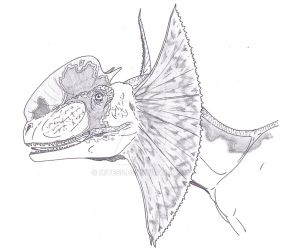 Dilophosaurus colored by Miyess