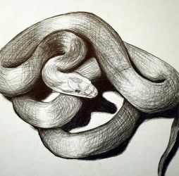 Ballpoint Snake by herbalcell