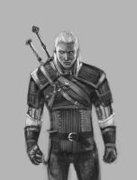 Day #30 Witcher by merkerinn