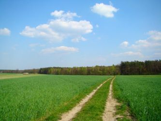Stock 277: countryside road by AlzirrSwanheartStock