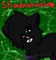 New main cats name~ by Flapper812-or-Shadow