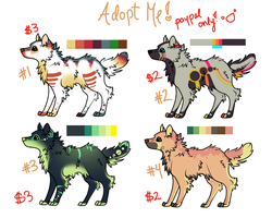 Canine Adoptables- Paypal- PRICE REDUCTION by Oogeepatogoa