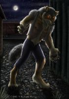 The Werewolf of Defiance by Nashoba-Hostina