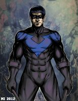 Nightwing by crow110696