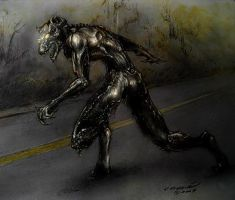 Cryptid sighting -concept1 by TheNovemberSpirit