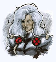 Storm by BigChrisGallery