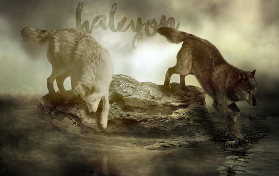 Halcyon Sepia Banner by LoneWolf91