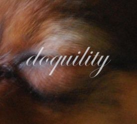 doquility by egotyk