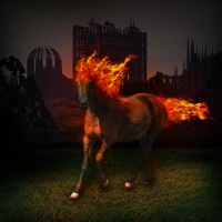 Fire Horse by ViniciusCarbonera