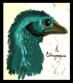 Archaeopteryx by ToxicKittyCat