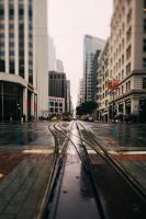 Tracks and drizzle by LyraWhite