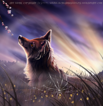 Spirit of spring by WolfRoad