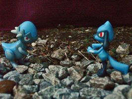 Cranidos vs Riolu by Bloodthirstwolf