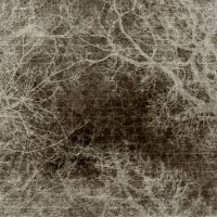 Antique Texture 8 by Inthename-Stock