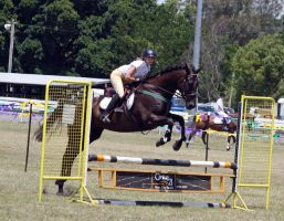 STOCK Showjumping 368 by aussiegal7