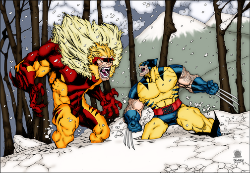 Wolverine VS Sabretooth by Blackmoonrose13