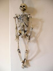 Skeleton hanging by restmlinstock