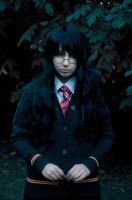 Harry Potter fem!!! by Luthien-Undomiel