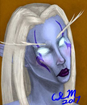Character Portrait:  Seradallin Moonshadow by teutelquessir