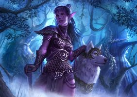 Nightelf with Wolf by NikolaiOstertag