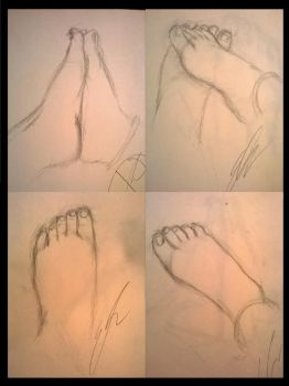 Feet Study by Shogun95