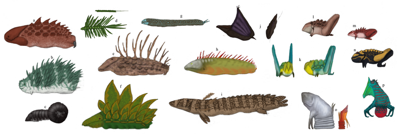 TFIF concept, Slugfish diversity by Dragonthunders