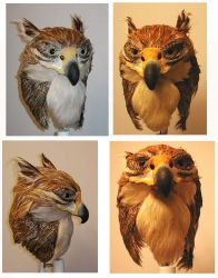 Griffin Mask: Multiple views by Foxfeather248