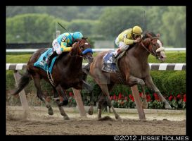 Union Rags wins the Belmont Stakes by Jessie-kad