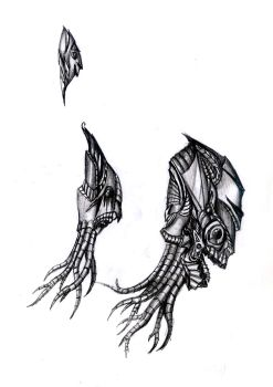 fantasy  heads drawings by uros97