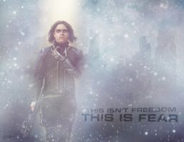 Winter Soldier Freedom/Fear Wallpaper by thecannibalfactory