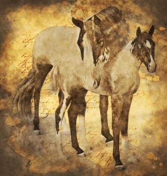 Foal and mother by ariela-alez