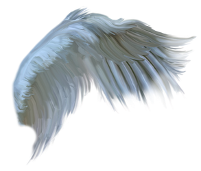 FREE wings2016BH by DeniseWorisch