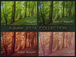 Autumn 2015 Collection  by Laurent-Dubus