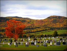 Village Cemetery In Fall by JocelyneR