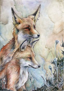 Two foxes and lichens by searoth