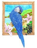 Spix's Macaw by Music-Raven