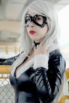 black cat cosplay by ary-neko