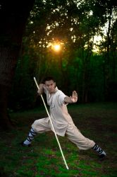 Shaolin Kung Fu in Plumstead Bostol Woods by TMProjection