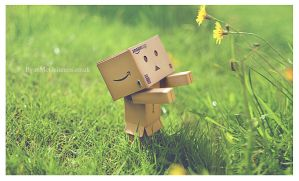 Danbo After rain by RyanMichael