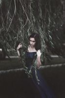 Silent crying of a willow on wind by MariaPetrova