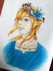 Link : Breath of the wild by Caronat