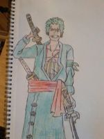 Zoro New world by arranboi123