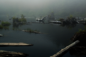 Snag Lake 5 by Alegion-stock