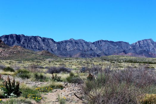Franklin Mountains by hclausen